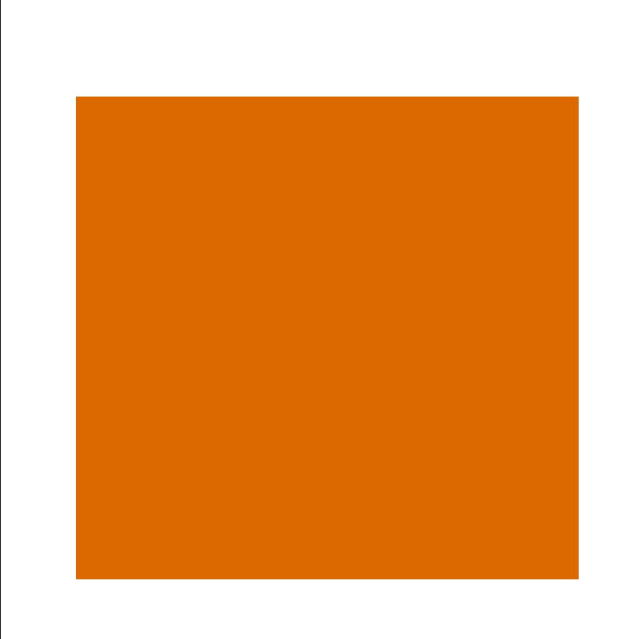 PwC-skatteradgivning-Family-solid_0005_orange.png