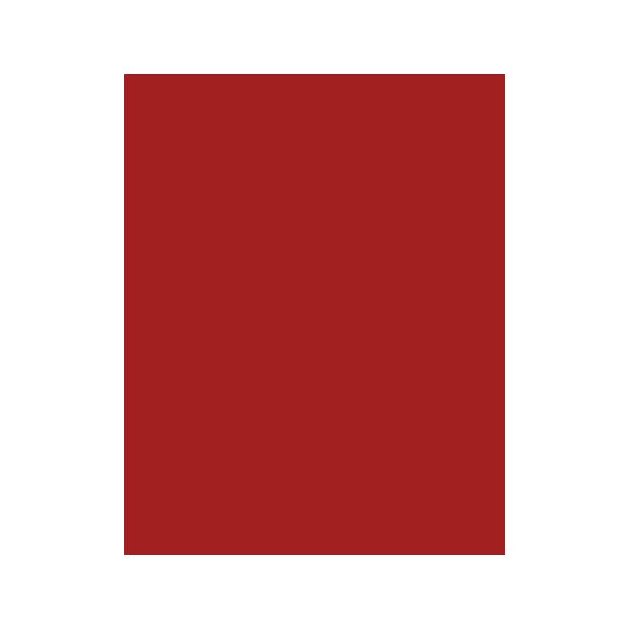 PwC-skatteradgivning-Plant-solid_0002_burgundy.png
