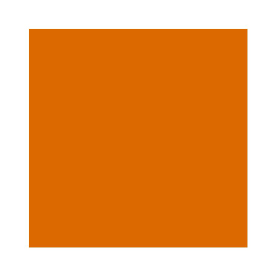 PwC-skatteradgivning-Globe-solid_0005_orange