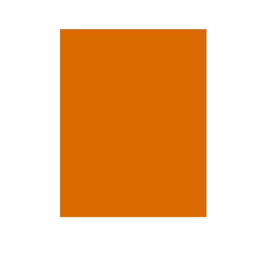 PwC-skatteradgivning-School-solid_0005_orange