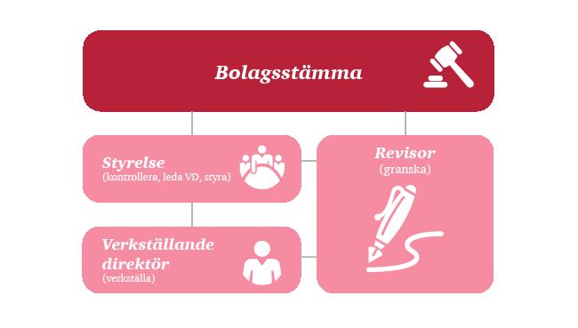 Aktiv styrelse - roller bolagsfördelning