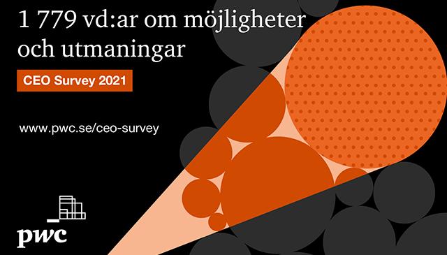 CEO Survey 2021
